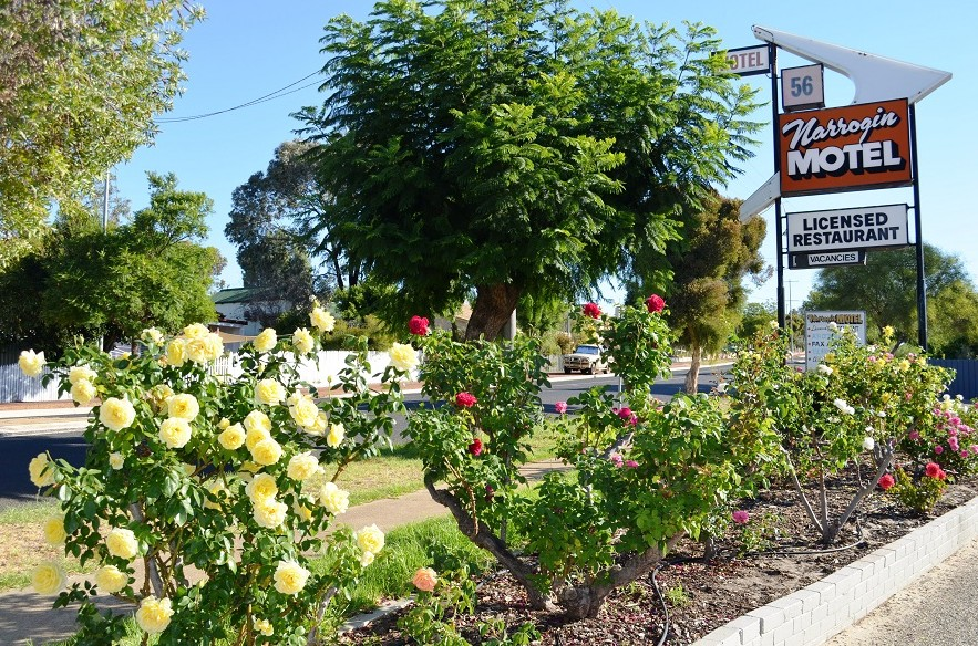 Narrogin Motel - Accommodation Gladstone
