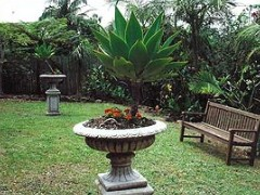 Bangalow Retreat - Accommodation Gladstone