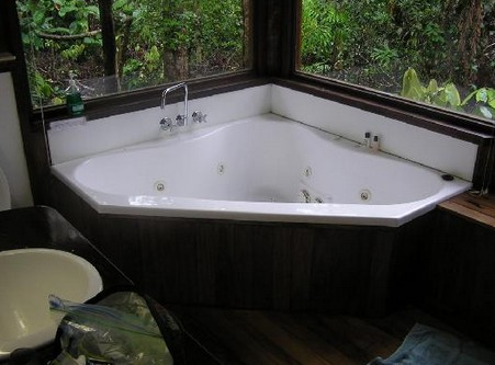 The Canopy Rainforest Tree Houses and Wildlife Sanctuary - Accommodation Gladstone