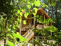 Rivers Edge Rainforest Retreat - Accommodation Gladstone