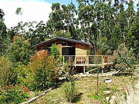 Southern Forest Accommodation - Accommodation Gladstone