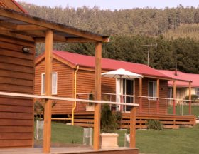 Maydena Country Cabins Accommodation  Alpaca Stud - Accommodation Gladstone