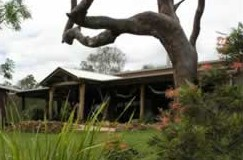 The Hollow Log Country Retreat - Accommodation Gladstone
