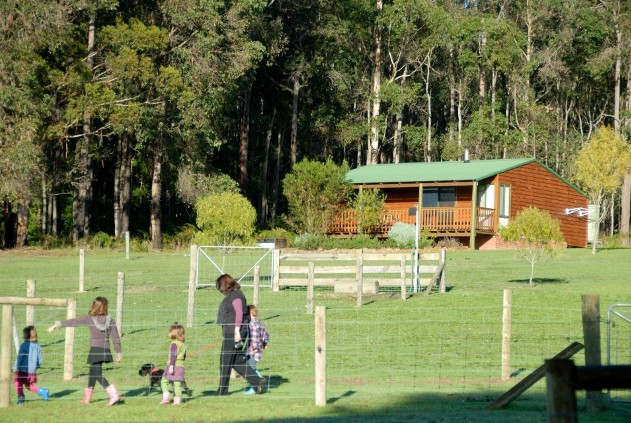 Diamond Forest Farm Stay - Accommodation Gladstone