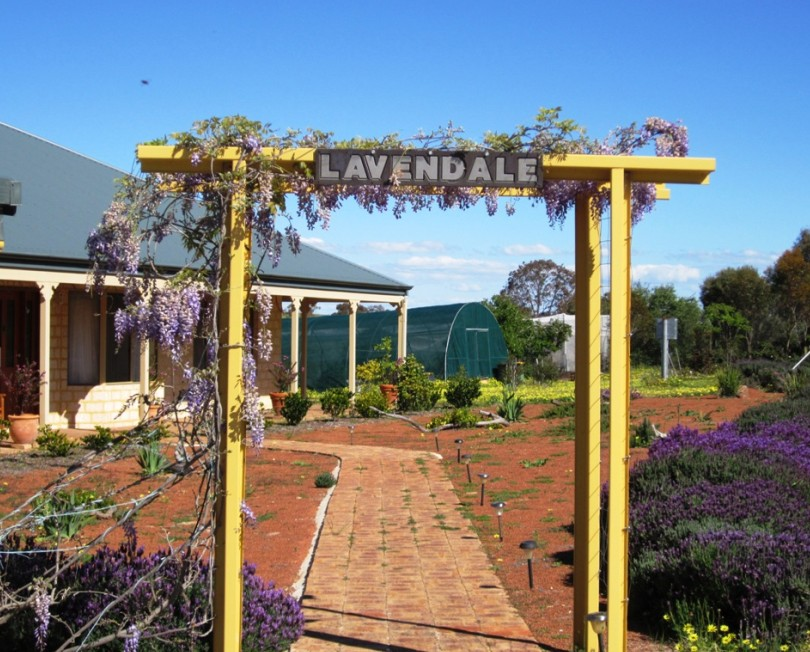 Lavendale Farmstay and Cottages - Accommodation Gladstone