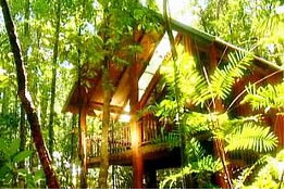 The Canopy Treehouses - Accommodation Gladstone