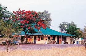 Wauchope Hotel and Roadhouse - Accommodation Gladstone