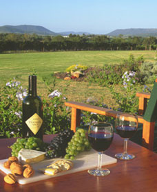 Tranquil Vale Vineyard Cottages - Accommodation Gladstone