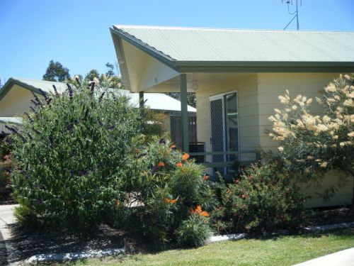 Pepper Tree Cabins - Accommodation Gladstone