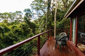 Kondalilla Eco Resort - Accommodation Gladstone
