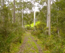 Huon Valley Eco Wilderness Retreat - Accommodation Gladstone