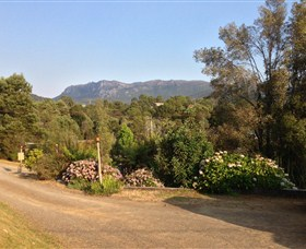 Rosebery Cabin and Tourist Park - Accommodation Gladstone