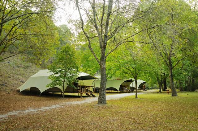 Buchan Caves Reserve - Accommodation Gladstone
