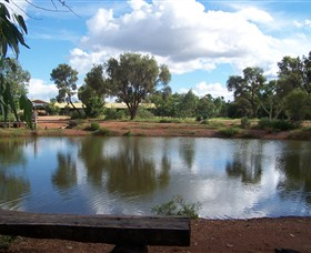 Gemtree Caravan and Tourist Park - Accommodation Gladstone