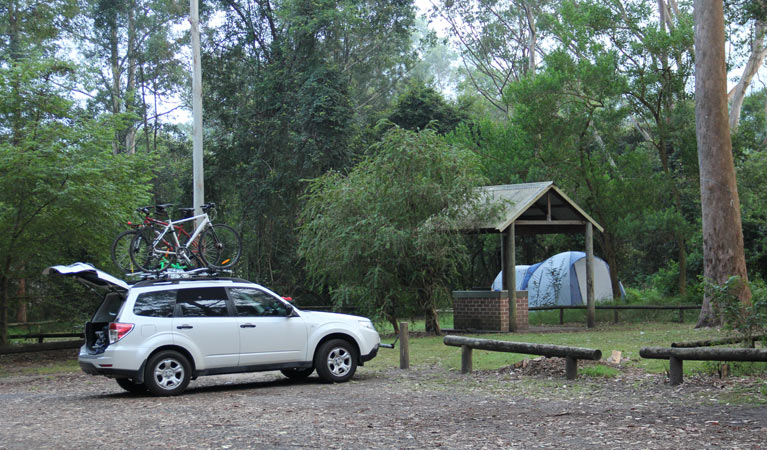 Mill Creek campground - Accommodation Gladstone
