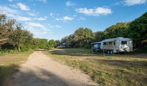 Racecourse Campground - Accommodation Gladstone