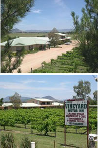 Mudgee Vineyard Motor Inn - Accommodation Gladstone