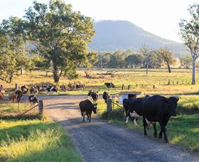 Tommerups Dairy Farmstay - Accommodation Gladstone