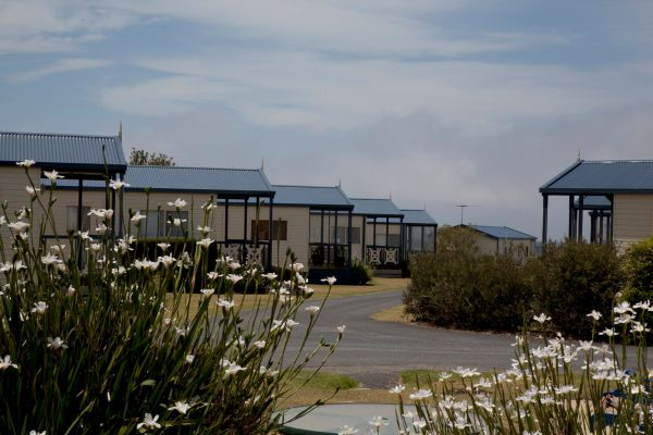 Swan Bay Holiday Park