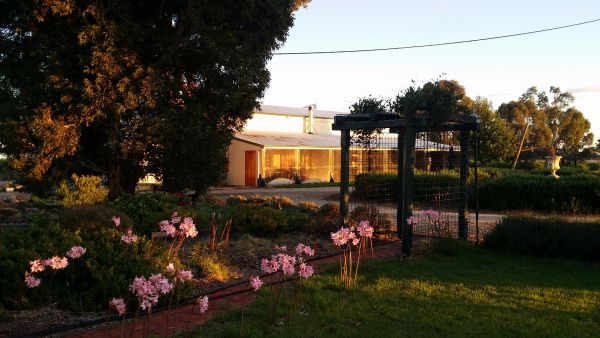 Angas Plains Wines Suites - Accommodation Gladstone