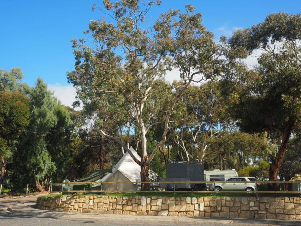 Murray Bridge Marina Camping And Caravan Park - Accommodation Gladstone