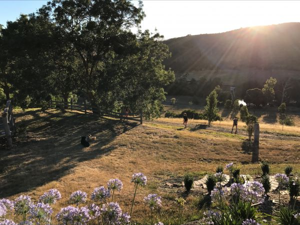 Shearer's Hill - Luxury Farm Stay - Accommodation Gladstone