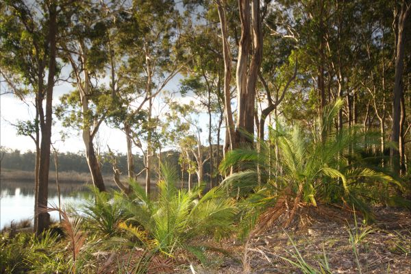Tanja Lagoon Camp - Accommodation Gladstone