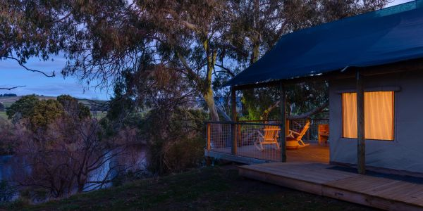 Truffle Lodge - Accommodation Gladstone