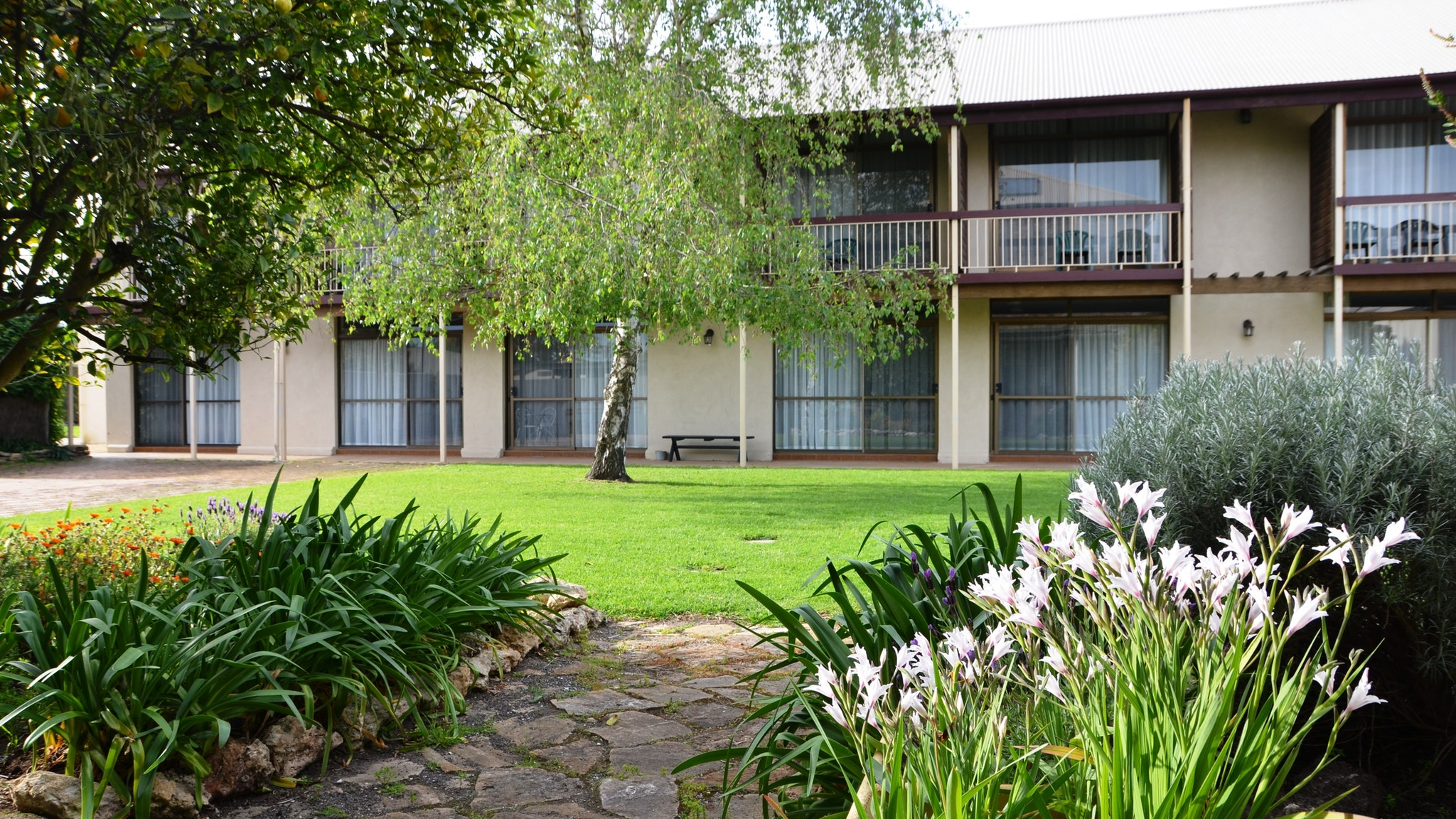 Coonawarra Motor Lodge - Accommodation Gladstone