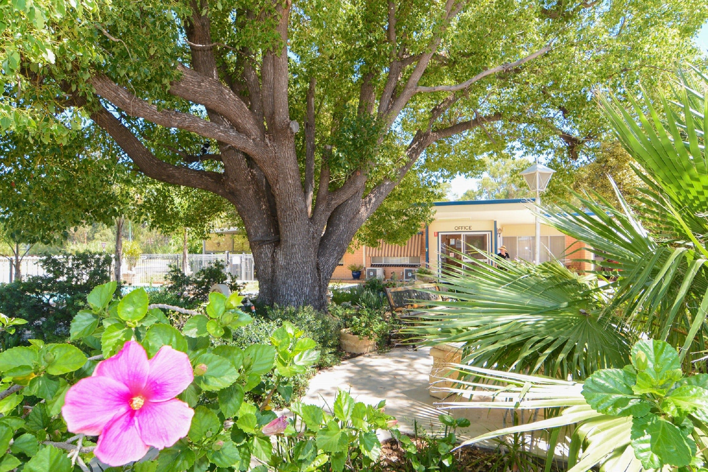 Balranald Sturt Motel - Accommodation Gladstone