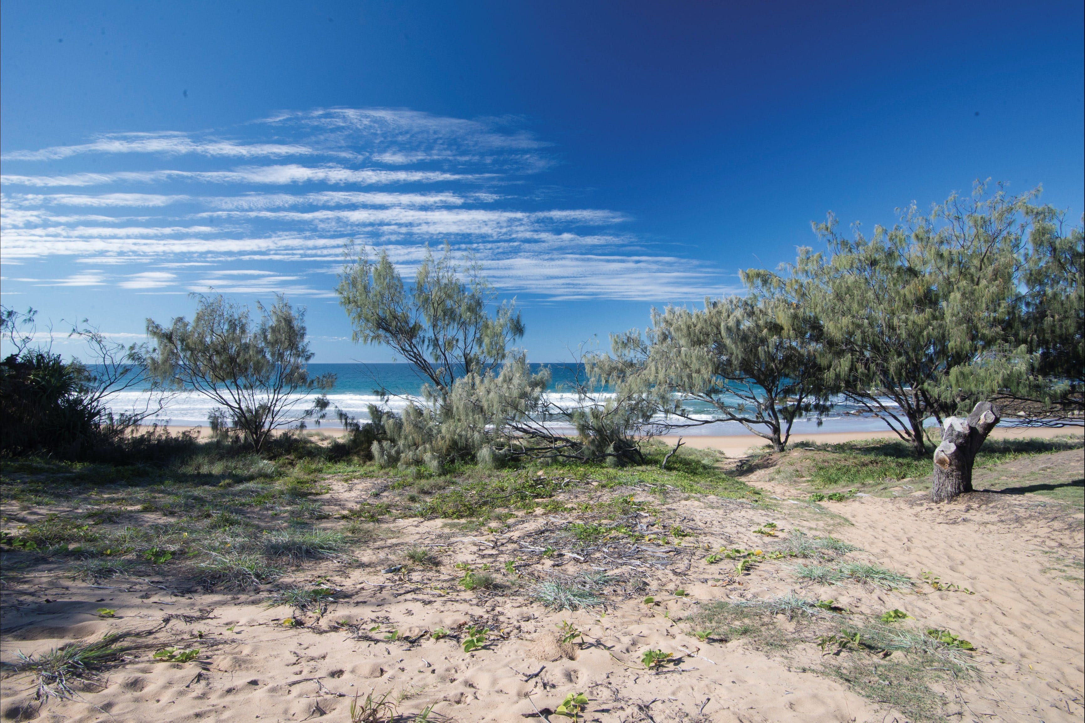 Deepwater National Park camping - Accommodation Gladstone