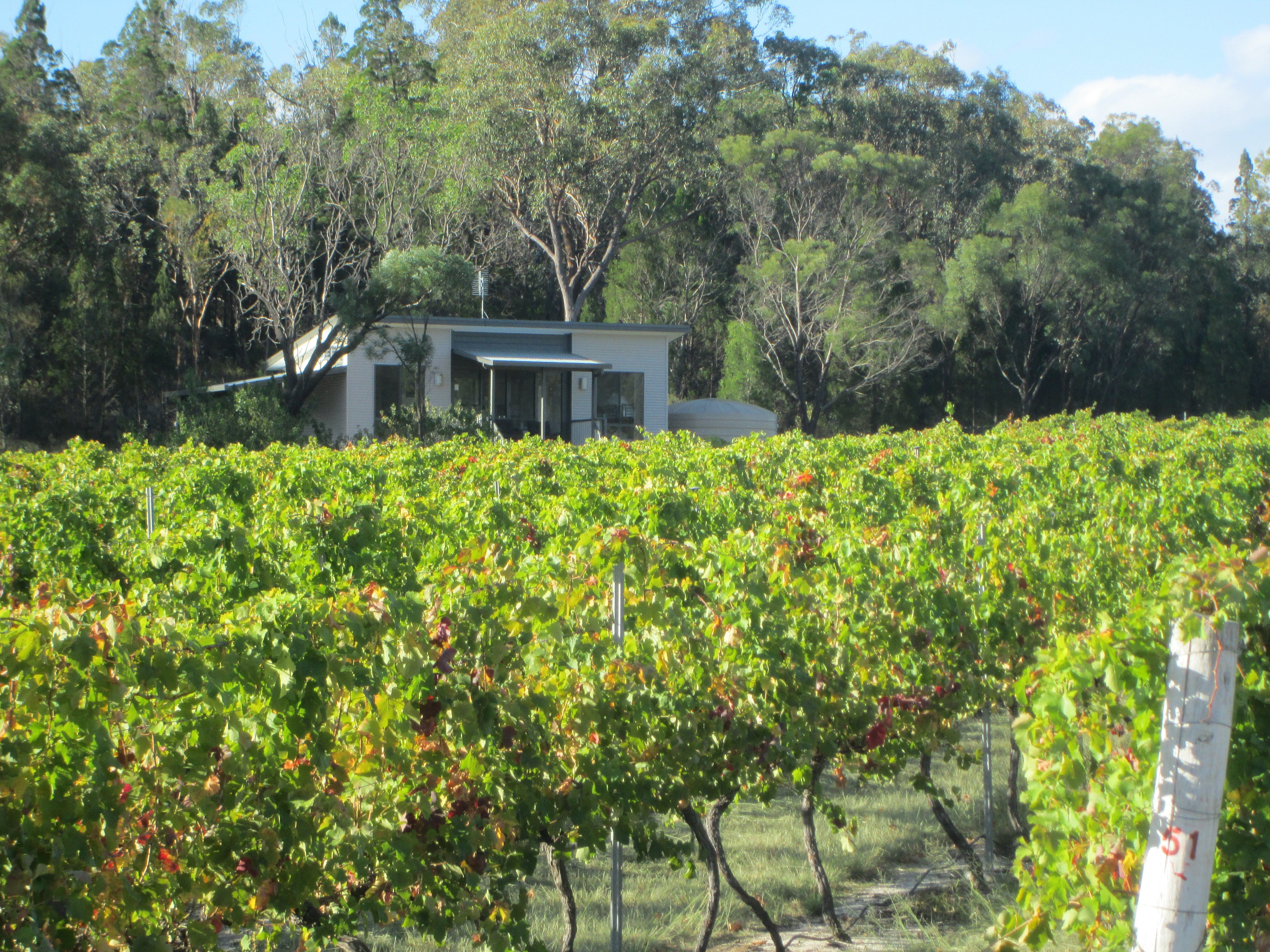 Just Red Wines Vineyard Cabins - Accommodation Gladstone