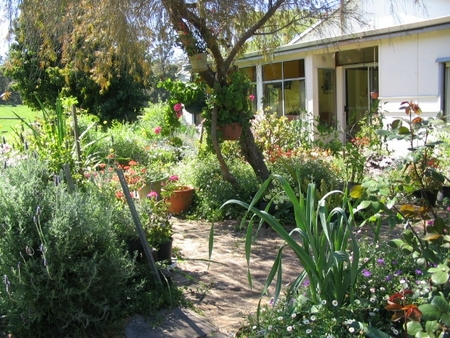 Warren Grange Farmstay and Bed  Breakfast - Accommodation Gladstone