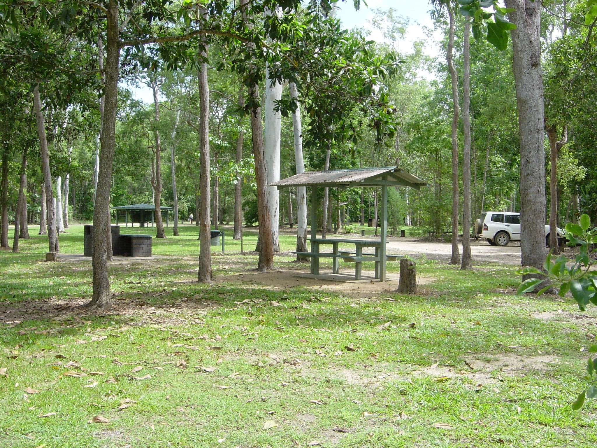 Broadwater camping area Abergowrie State Forest - Accommodation Gladstone