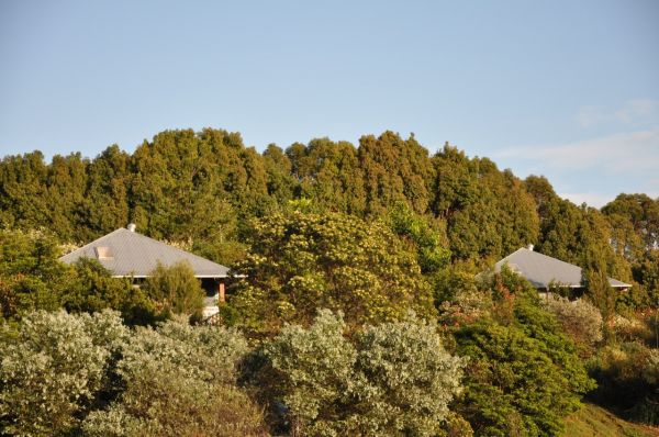 Tallaringa Views - Accommodation Gladstone