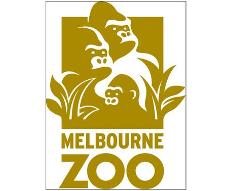 Melbourne Zoo - Accommodation Gladstone