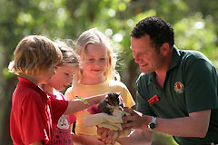 Cleland Wildlife Park - Accommodation Gladstone