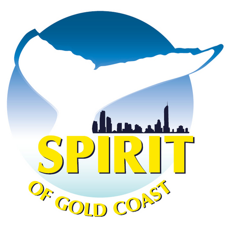 Spirit of Gold Coast Whale Watching - Accommodation Gladstone