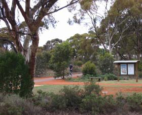 Gribble Creek Walk and Cycle Way - Accommodation Gladstone