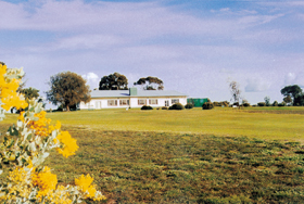 Lucindale Country Club - Accommodation Gladstone