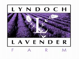 Lyndoch Lavender Farm and Cafe - Accommodation Gladstone