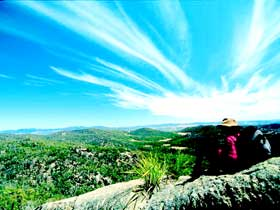 Girraween National Park - Accommodation Gladstone