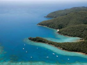 Butterfly Bay - Hook Island - Accommodation Gladstone