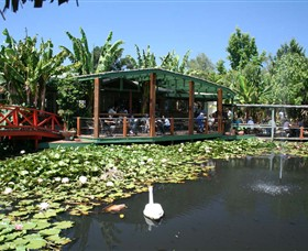 Blue Lotus Water Garden - Accommodation Gladstone