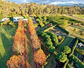 High Country Maze - Accommodation Gladstone