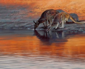 Steve Morvell Wildlife Art - Accommodation Gladstone