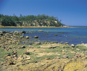 Aslings Beach - Accommodation Gladstone