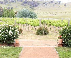 Brindabella Hills Winery - Accommodation Gladstone