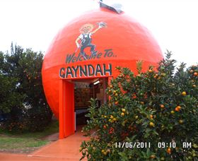 Gayndahs Big Orange - Accommodation Gladstone