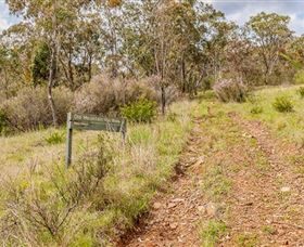 Old Mountain Road Walking Track - Accommodation Gladstone